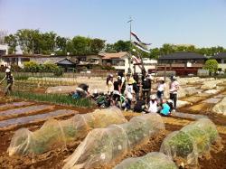 ゴールデンウィークが始まった日曜日キッズ野菜クラブ(全7回のカリキュラム)の第1回目が17名の参加者で行われました。 6da17c0b03